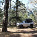 The Pines Campground, Mt Camel, Victoria