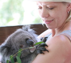 Gita feeding a Koala at Gorge Road Wildlife Park, Cudlee Creek