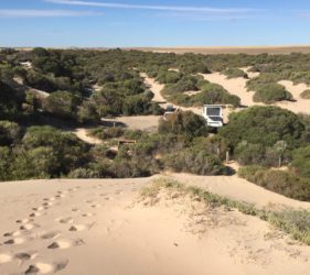View back to our campsite from dunes at the Bamboos