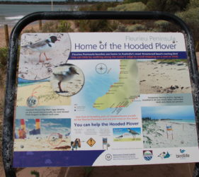 Hooded Plover sign at Middleton Beach